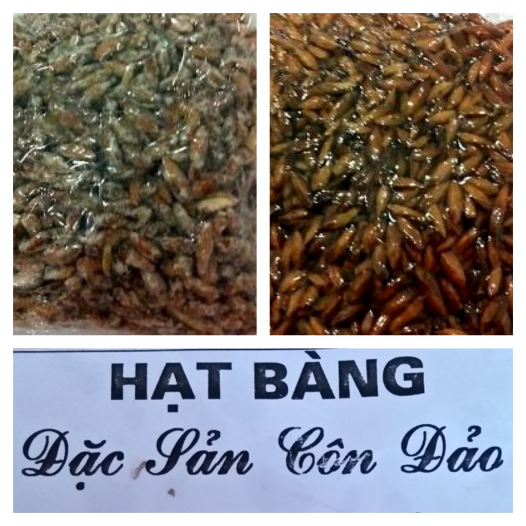 mut-hat-bang-mon-dac-san-con-dao-co-1-0-2-hinh-111-2_Fotor_Collage